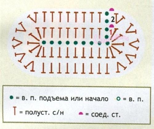 Схема стопы